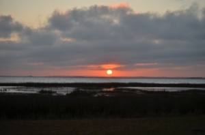 Sapelo Island Sunset