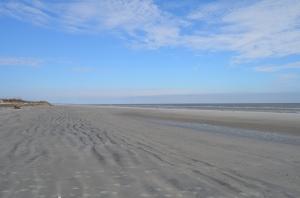 Nanny Goat Beach - Sapelo Island