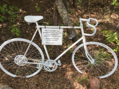 Swamp Rabbit Trail 5