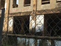 Graffitt - Ruins Spanish Moss Trail